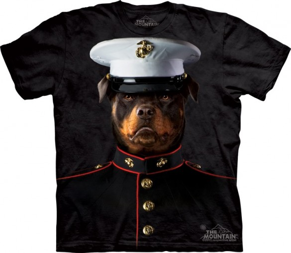 Daily Tee Marine Sarge from The Mountain