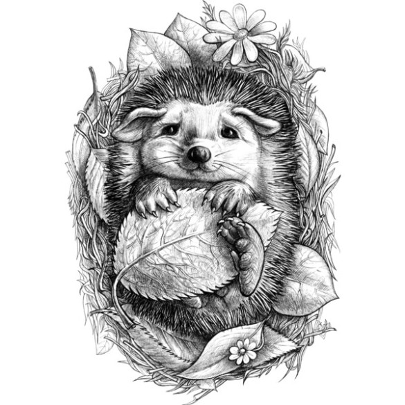 Little Hedgehog T-shirt design elinakious design