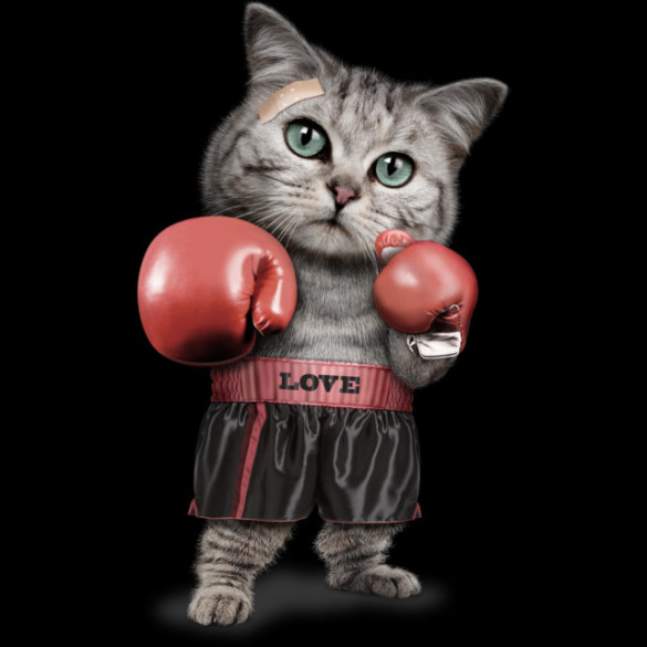 BOXING CAT T-Shirt Design by ADAMLAWLESS image