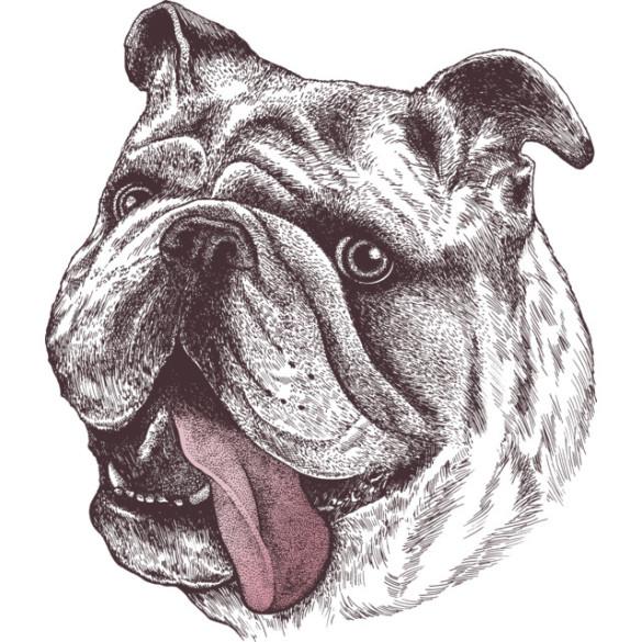 Bulldog King T-shirt Design by rcaldwell