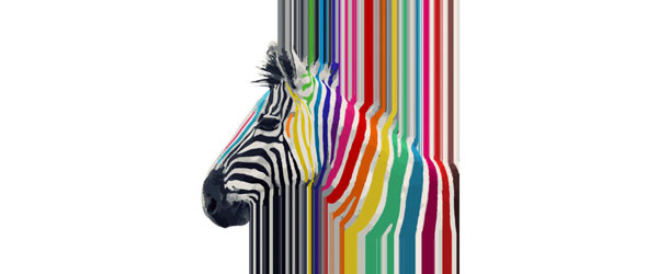 Awesome trendy colourful vibrant stripes zebra T-shirt Design by InovArts design main image