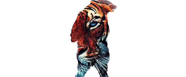 Bear and Tiger T-shirt Design by jbjart image main