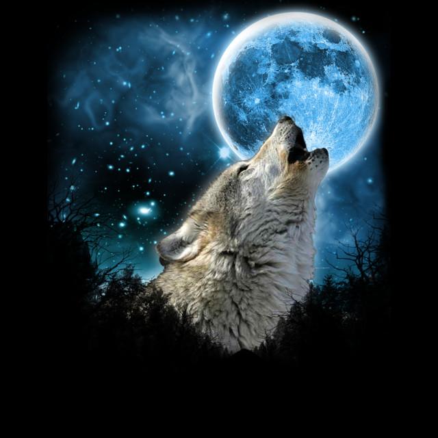 Silver Wolfs Skylight T-shirt Design by comdo99 main image