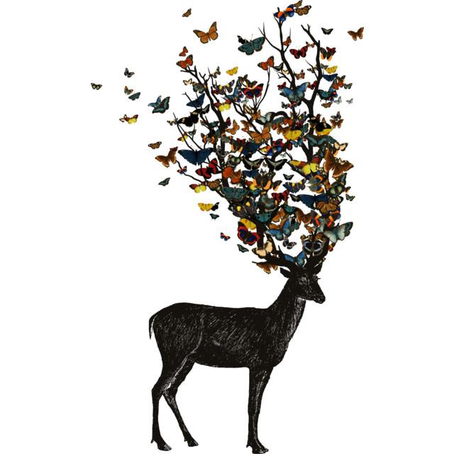 Wild Nature T-shirt Design by tobiasfonseca design
