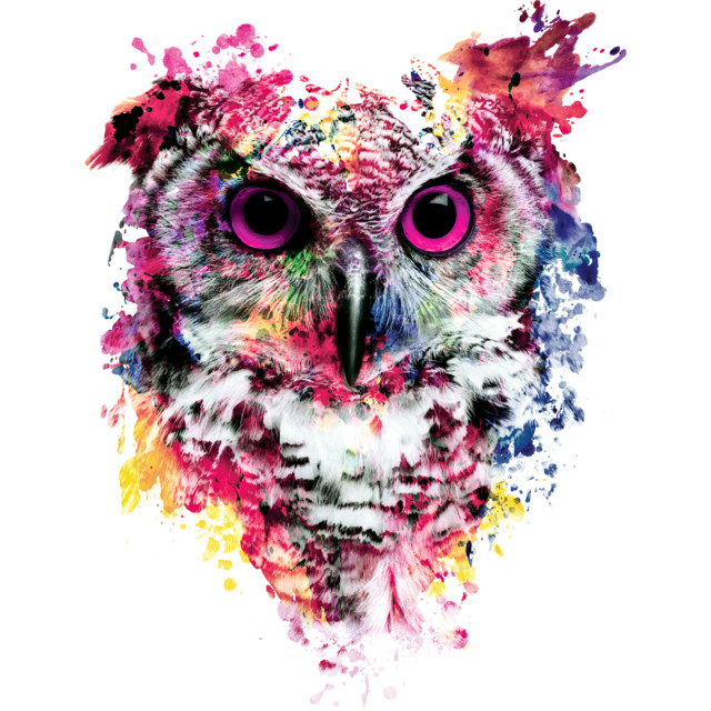 Owl T-shirt Design by rizapeker design