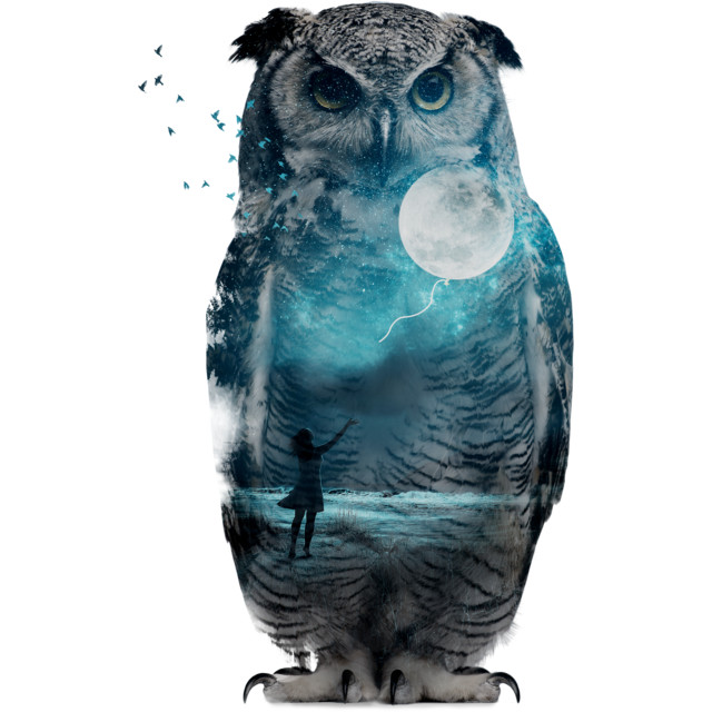 Owl t shirt design by sookkol reswag T shirt with owl design