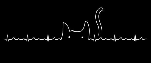 cat-lover-t-shirt-design-by-tobe-fonseca-design