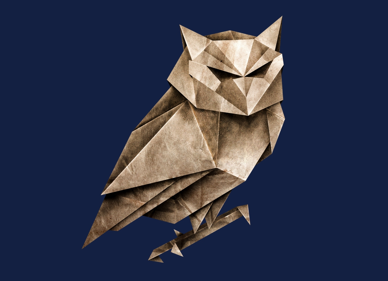 OWLIGAMI Design by Lucas Scialabba design