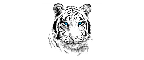White Tiger T-shirt Design by Alberto Perez Chamosa