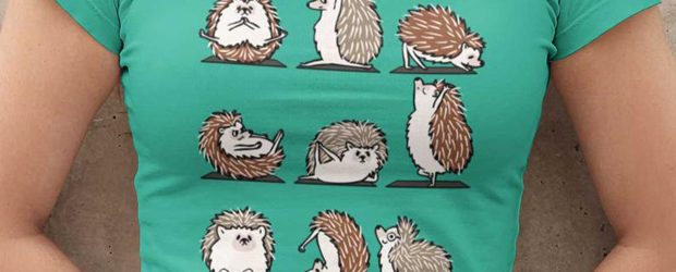Cute Yoga Hedgehogs t-shirt design